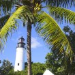 Stock Photo: Lighthouse and palms