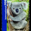 Australia Koala Bear Postage Stamp - Stock Photo