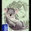 Australia Koala Bear Postage Stamp — Stock Photo #15703467
