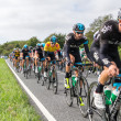 HONITON, UK - SEPTEMBER 20: Bradley Wiggins wears the IG Yellow Jersey as current tour leader, in the pack of the Devon stage of the Tour of Britain cycle race on September 20, 2013 in Honiton, UK — Stock Photo