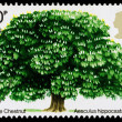 Britain Horse Chestnut Tree Postage Stamp — Stock Photo #39066281
