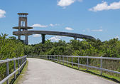 Florida Everglades Observation Tower — Stock Photo