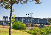 Tel Aviv. Bridge in the Park Hayarkon. — Stock Photo
