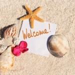 Blank paper beach sand starfish shells summer — Stock Photo