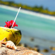 Coconuts on the beach — Stock Photo #12606936