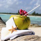 Caribische paradijs strand kokosnoten cocktail — Stockfoto
