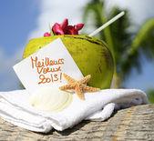 Kokosové pláže karibského ráje koktejl — Stock fotografie
