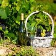 Harvest and wine — Stock Photo #18670387