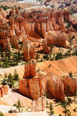 Canyon de bryce — Photo