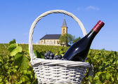 French country and vineyards — Stock Photo