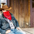 Cowboy spirit — Stock Photo