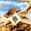 Wanted far west — Stock Photo