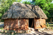 Traditional mayan home — Stock Photo