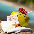 Caribbean paradise beach coconuts cocktail — Stock Photo #27577109