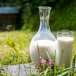 Milk in a jug and a glass — Stock Photo