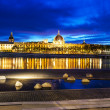 Stock Photo: Lyon by sunset in summer