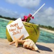 Caribbean paradise beach coconuts cocktail — Stock Photo #38045053