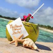 Coco plage de paradis des caraïbes cocktail — Photo
