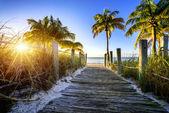 Weg naar het strand — Stockfoto
