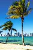 Miami Downtown skyline — Stock Photo