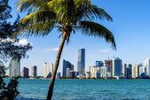 Miami Downtown skyline — Foto Stock