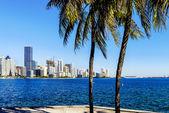 Miami Downtown skyline — Foto de Stock
