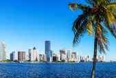 Miami Downtown skyline — Stock Photo
