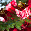 Christmas Tree — Stock Photo #12404846