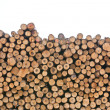 Stock Photo: Pile of wood