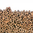 Stockfoto: Pile of wood