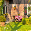 Traditional Dutch house with garden — Stock Photo #12780807