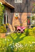 Traditionele nederlandse huis met tuin — Stockfoto