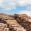 Foto Stock: Pile of wood