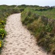 Sand footpath through dunes — Stock Photo