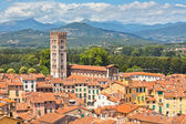 View over Lucca, Tuscany town — Stock Photo