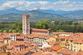 Widok na lucca, miasto toskania — Zdjęcie stockowe
