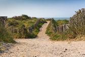 Sand footpath through dunes at the beach — Stock Photo