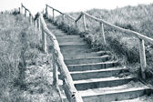 Stairs to the top of a dune — Stock Photo