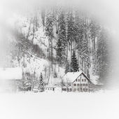 Casa alpina cubierto de nieve en los bosques de montaña — Foto de Stock