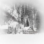 Casa alpina nevada na floresta de montanha — Foto Stock
