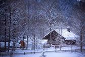 Zasněžené alpské dům v lese — Stock fotografie