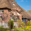 Beautiful traditional Dutch house with a thatched roof — Stock Photo