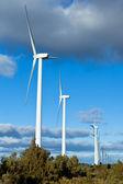 Row of wind turbines — Stock Photo