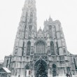 Antwerp Cathedral at Winter Snowstorm — Stock Photo