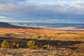 Castilla La Mancha, Spain at winter — Stock Photo