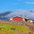 Red Small House in East Iceland — Stock Photo