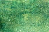 старый пилинг зеленой краской стены фон — Стоковое фото