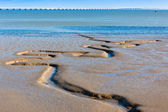 Tagus river bottom and Vasco da Gama Bridge as background — Stock Photo