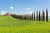 Classic View of Tuscan Farmhouse, Green Field and Cypress Tree R — Stok fotoğraf