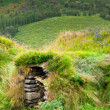 Overgrown Typical Rural Icelandic Underground house — Stock Photo